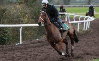 Kèo đua ngựa Dafabet: Đặt cược vào Willie Mullins