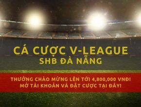 v-league-clb-da-nang-mua-giai-2019-lich-thi-dau-ket-qua