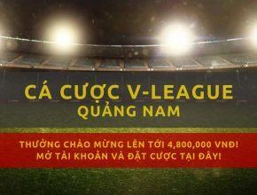 v-league-clb-quang-nam-mua-giai-2019-lich-thi-dau-ket-qua
