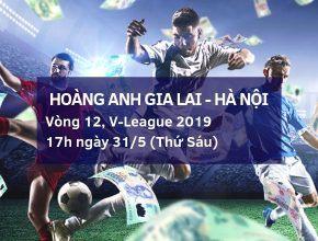 dafabet-viet-nam-v-league-2019-hoang-anh-gia-lai-ha-noi